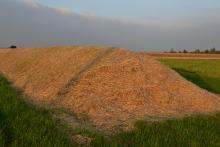 Le savoir faire des producteurs du Loiret permet de stocker les betteravesdurant l'hiver tout en conservant leurs qualités. Les betteraves sont bâchées et recouvertes de paille