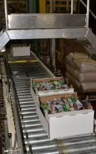Packaged beets coming off the steamer assembly line, prior to shipping